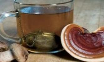 Чай з гриба позбавить від ангіни і атеросклерозу