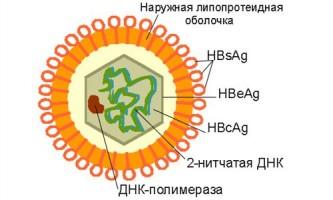 Як в сучасному світі можна заразитися гепатитом