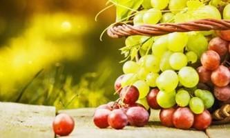 Дієта на винограді. 200 грам ягід в день допоможуть залишатися стрункою.