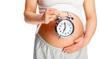 Формування плоду по тижнях вагітності. Розвиток плоду по тижнях