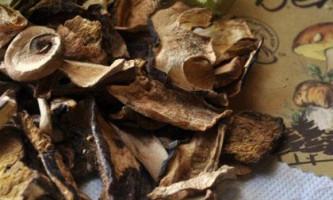 Як готувати сушені білі гриби?