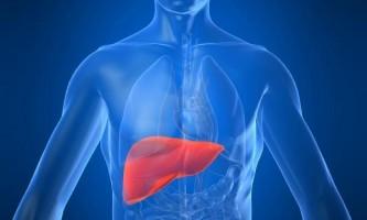 Як почистити печінку