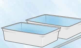 Як проростити боби на вологій кухонної папері