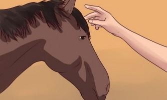Як спішитися з коня
