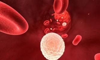 Як відновити лейкоцити