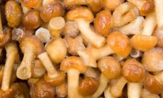 Як заморозити гриби?