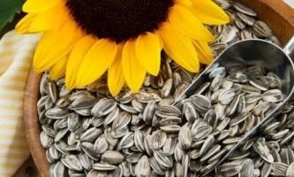 Як смажити насіння на сковороді в домашніх умовах