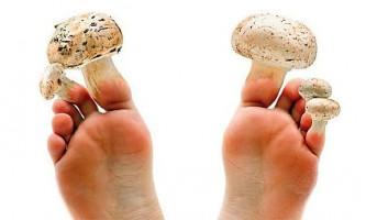 Який лікар лікує грибок нігтів на ногах - мікології або дерматолог?