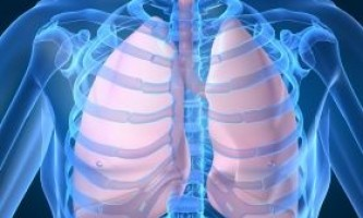 Ключова молекула збудника туберкульозу