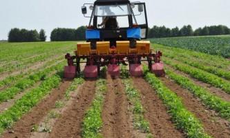 Культиватор для суцільного обробітку грунту під посіви сільгоспкультур