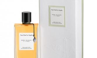 Van cleef & arpels представили новий аромат rose velours