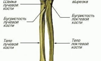 Перелом передпліччя (ліктьової та / або променевої кістки)