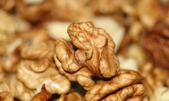 Користь і шкода волоських горіхів
