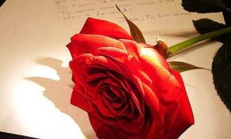Прощальний лист коханому чоловікові, коханій людині. Попрощалася з чоловіком.