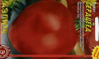 Сорт томата: серцеїд
