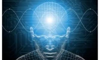 Здатність говорити контролюється двома півкулями мозку