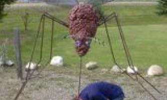 Засіб при алергії на укуси комах