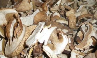Сушені білі гриби: рецепти приготування страв